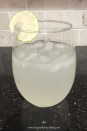 Easy Refreshing Margs_10