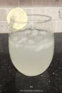 Easy Refreshing Margs_10