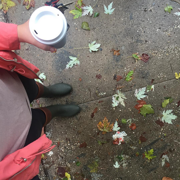 Rainy Fall Days