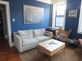 Living Room, DBK LIving Room, DBK at home, Jersey City Condo, small space, small living room, one room challenge, one room challenge spring 2016, one room challenge guest, orc guest participant, orc spring 2016, orc spring 2016 guest, contemporary living room, mod living room, before pictures, as is pictures, dbk orc, find the dog, hidden dog picture, scwt,