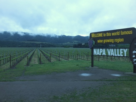 Girls getaway designedbykrystleblog for Best time to visit napa valley wine country