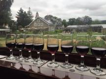 Napa Valley Wine Train, Wine Train, Wine Tasting, Napa Wine, Napa Vacation, Vacation,